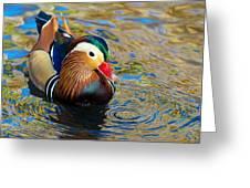 Mandarin Duck Swirls Greeting Card