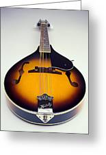 Mandolin  Greeting Card