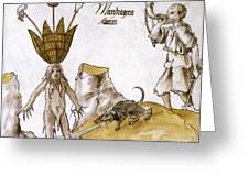 Mandrake And Herbalist Greeting Card