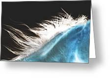 Mane Beauty Greeting Card