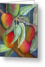 Mango One Greeting Card by Terry Arroyo Mulrooney