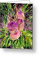 Mango Tree Fruit Greeting Card