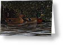 Mangrove Mallards Greeting Card