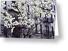 Manhattan Spring Greeting Card