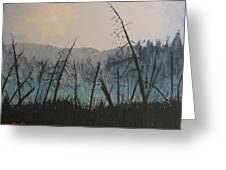 Manitoulin Beaver Meadow Greeting Card