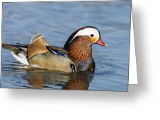 Manny Afloat Greeting Card