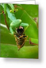 Mantis Munchies Greeting Card