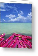 Many Pink Kayaks Greeting Card