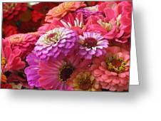 Many Shades Of Pink Greeting Card