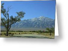 Manzanar 1 Greeting Card