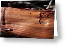 Manzanita Trunk Greeting Card