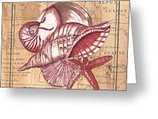 Map And Shells Greeting Card