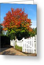 Maple And Picket Fence Greeting Card by Olivier Le Queinec