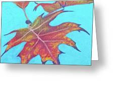 Drifting Into Fall Greeting Card by Phyllis Howard