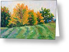 Maple Grove Greeting Card