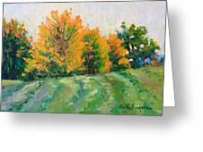 Maple Grove Greeting Card