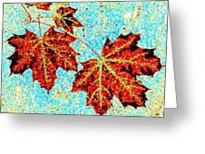 Maple Mania 13 Greeting Card