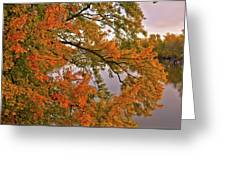 Maple Over The River Greeting Card
