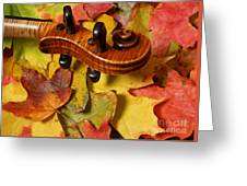 Maple Violin Scroll On Fall Maple Leaves Greeting Card