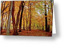 Maple Woods Trail 3 Greeting Card