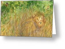 Mara The Lioness Greeting Card