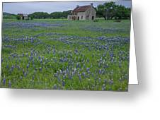 Marble Falls Texas Stone House And Bluebonnets Greeting Card