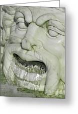 Marble Head Greeting Card