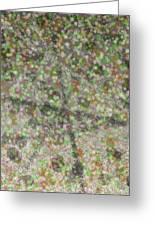 Marble Slab 6-23-2015 - 1 Greeting Card