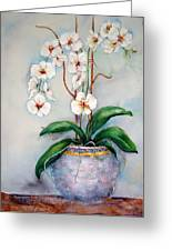 March Orchids Greeting Card