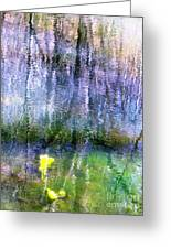 March Pond Greeting Card