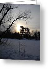 March Sunrise Behind Pines Greeting Card