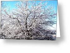March Tree Greeting Card