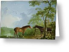 Mare And Stallion In A Landscape Greeting Card by Sawrey Gilpin