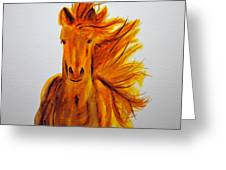 Mare In Motion Greeting Card