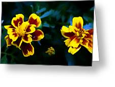 Marigold In Living Color Greeting Card