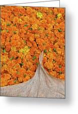 Marigolds II Greeting Card