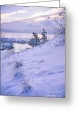 Marina And Snow Greeting Card