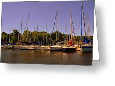 Marina At Lake Murray S C Greeting Card