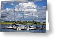 Marina - Branched Oak Lake Greeting Card