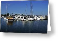 Marina Del Rey California Greeting Card