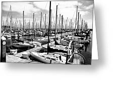 Marina In Black And White Greeting Card