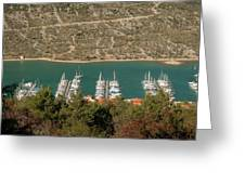 Marina In Cres Greeting Card