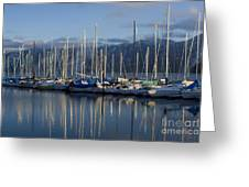 Marina Tranquility Greeting Card