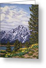 Marina's Edge, Jenny Lake, Grand Tetons Greeting Card by Erin Fickert-Rowland