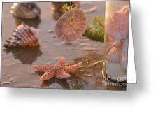Marine Life Greeting Card