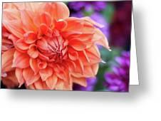 Market Flowers  Greeting Card