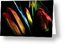 Market Tulips Greeting Card