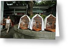 Market Vendor Selling Caged Birds Greeting Card
