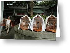 Market Vendor Selling Caged Birds Greeting Card by Sami Sarkis