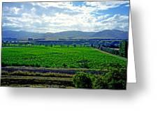 Marlborough Wine Country Greeting Card